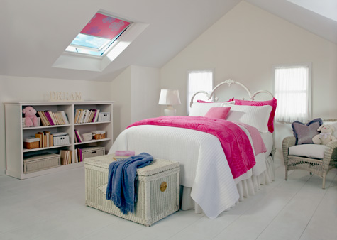 Skylight Blinds and Accessories